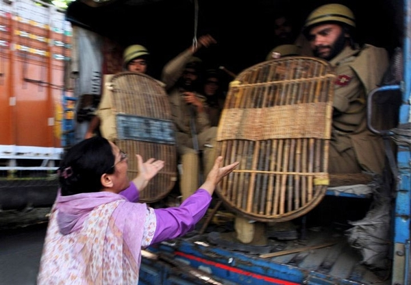 A woman pleading with security personnel during the November 2010 protests in Kashmir. Flickr / Kashmir Global