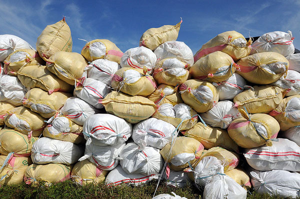 Philippines (June 30, 2008) 100-pound sacks of rice stacked before being loaded into U.S. Navy helicopters Photo: U.S. Navy