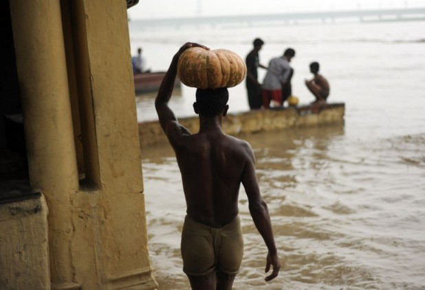 An Indian man carries a pumpkin he salvaged from the rising waters of the Yamuna river in New Delhi on June 18, 2013. PHOTO CREDIT: MANAN VATSYAYANA