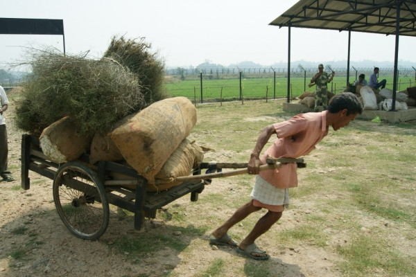 An authorised cart puller helping a vendor move their products to the stalls.